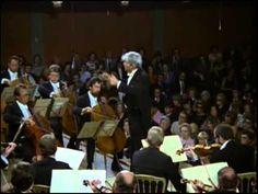 BEETHOVEN - Symphony No. 5 - Leonard Bernstein (1)   http://pintubest.com