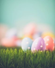 easter background with easter eggs and grass in pastel colors