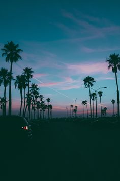 Relax. #palmtrees #sunset