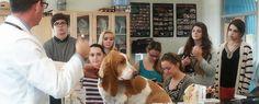 Congreso de docencia veterinaria http://www.um.es/actualidad/agenda/ficha.php?id=187681