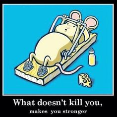 """""""What doesn't kill you, makes you stronger."""" #funny #fitness"""