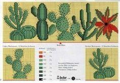 Schema punto croce Cactus-3