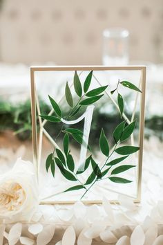 Table Number: Greenery pressed between glass picture frame