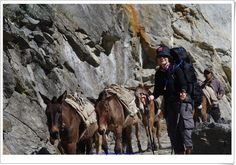 Im dalej pójdziemy, tym lepiej siebie poznamy, czyli nasz trekking dookoła Annapurny - część 1 ...   Życie i podróże Bradley Mountain, Nepal, Trekking, Backpacks, Bags, Handbags, Backpack, Backpacker, Bag
