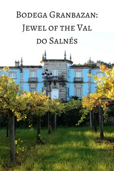 Val do Salnés is known as the birthplace of Albariño and encircles the historic town of Cambados in the Rias Baixas Region of Spain.
