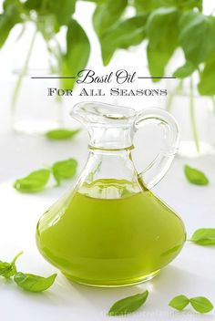 Flavored Olive Oil, Flavored Oils, Infused Oils, Pollo Stroganoff, Basil Oil, Steak And Seafood, Basil Recipes, Roasted Chicken Breast, Olives