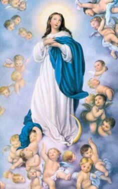 The Assumption Of The Blessed Virgin Mary Homily  Assumption Of The Blessed Virgin Mary  Women For Faith And Family