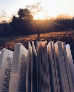 """sweptawaybbooks: """"Watched the sun set over Glasgow this evening with some special friends (check out my stories to see who! I've been absolutely devouring Mariana Zapata's From Lukov With Love. Book Aesthetic, Aesthetic Photo, Aesthetic Pictures, Aesthetic Coffee, I Love Books, Books To Read, Flatlay Instagram, Book Wallpaper, Coffee And Books"""