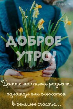 Доброе Утро, Травы, Вдохновение