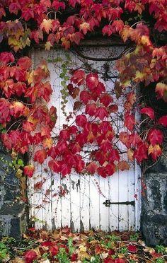 the secret garden in fall...