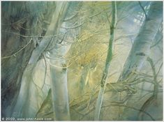 The Art of Alan Lee and John Howe