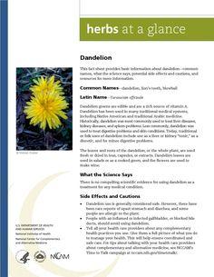 Dandelion. Full document available at http://nccam.nih.gov/health/herbsataglance.htm