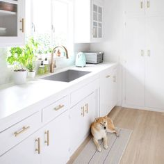 bm oxford white-- like how the cabinets dead end into the counter