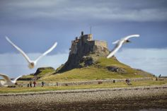 Lindisfarne Castle on Holy Island is accessed via a 3 mile causeway