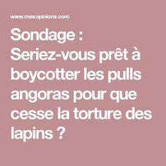 Sondage : Seriez-vous prêt à boycotter les pulls angoras pour que cesse la torture des lapins ?