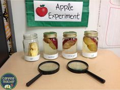 Apple Experiment with freebie! - Brenda Kovich Apple Experiment with freebie! Apple Experiment w Science Experiments Kids, Science Lessons, Science For Kids, Science Center Preschool, Science Table, Science Ideas, Earth Science, 5 Senses Preschool, Scientific Method Experiments