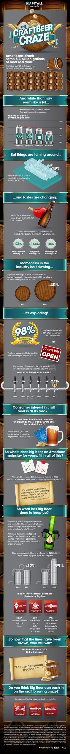 Infographics - The Craft Beer Craze, Can Big Beer Keep Up?