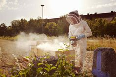 Urban Beekeepers by Stefan Hobmaier