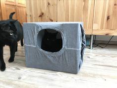 T-shirt cat house