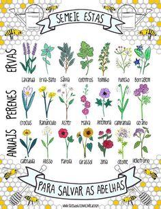SEM ABELHAS, SEM ALIMENTOS! Como combater a extinção das abelhas? Utilização extensiva de pesticidas, perda de habitats naturais, redes electromagnéticas, práticas apículas convencionais. http://asenhoradomonte.com/ Perda da biodiversidade e habitats naturais afeta todas espécies no planeta, sendo as abelhas um caso especial pela sua importância no equilíbrio dos ecossistemas – devido ao seu grande papel de polinizador natural.