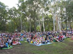 Summer Sounds crowd enjoys Annie and the Armadillos at the Australian National Botanic Gardens.