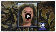 Woman who crashed into Long Island firehouse had stolen snake wrapped around her neck.  #CantMakeThisUp
