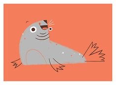 jillianevelyn: Animal of the Day: Silly Seal!
