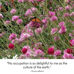 """""""No occupation is so"""