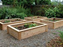 Guest Picks: Rustic Garden Refinements
