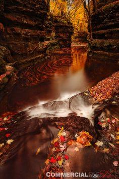 halloween usa big rapids
