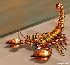 This picture, named Scorpion, was created by nasirkhan for the kitchen view photoshop contest.
