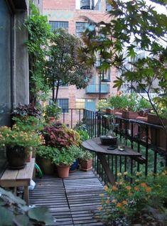 Beautiful garden and great balcony shape: ideas and tips - Balkon Pflanzen ♡ Wohnklamotte - Design RatBalcony Plants tan Furniture Small Balcony Decor, Small Balcony Garden, Small Balcony Design, Balcony Flowers, Balcony Plants, Balcony Ideas, Small Terrace, Terrace Decor, Balcony Gardening