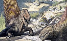 Synapsid reptiles from the Permian Period: Dimetrodon in the foreground with several Edaphosaurus behind