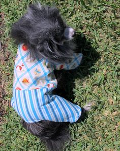 Small Canine's Pajamas Flannel Poky Little by BloomingtailsDogDuds, $23.95