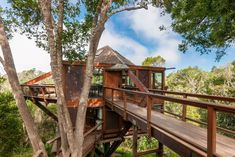 Aptos, California treehouse for rent on Airbnb