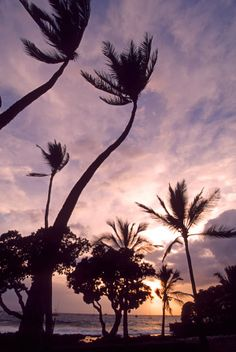 Windy Sunset in Makalawena Beach, Kailua Kona Hawaii United States