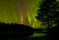 Northern Lights over Lapland