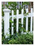 always had a thing for white picket fences