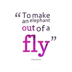 """To make an elephant out of a fly"". #Quotes #French #Proverb via @Candidman"