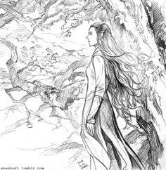 Tauriel fan art evankart.tumblr.com - just an amazing artist!!!