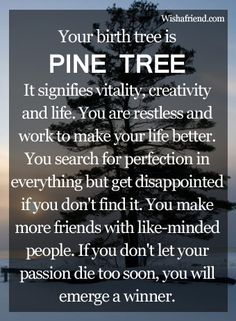 Your Birth Tree: Pine Tree September I love this stuff and it most often is quite accurate to my personality.  Makes you think!