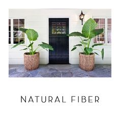 Tropical Home Photos: Find Island-House Ideas and Tropical Decor Online Front Porch Plants, Front Porch Flowers, Balcony Plants, Balcony Garden, Potted Plants, Leafy Plants, Garden Plants, Full Sun Plants, Garden Shade
