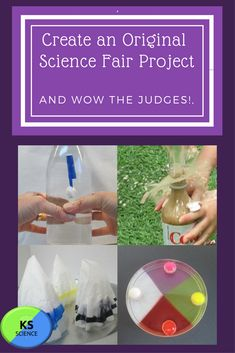 Create a project that is original and will wow the judges. This workbook will help with planning a science fair project Engineering Science Fair Projects, Elementary Science Experiments, Science Biology, Science Lessons, Science Activities, Awesome Science Fair Projects, Science Resources, Fourth Grade Science, Next Generation Science Standards
