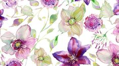 Violet watercolor flower wallpapers download large screen.