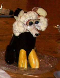 cauliflower-dog-sheetal