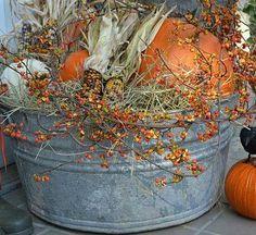 Rustic bucket of pumpkins