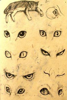 Animal Eyes Tuto by UnicatStudio on deviantART # Cat Eyes Drawing, Blind Drawing, Cat Eye Tutorial, Cat Drawing Tutorial, Face Drawing Reference, Art Reference, Animal Drawings, Art Drawings, Manga Cat