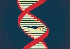 A good summary article - and very up-to-date - as to where we are with DNA, privacy, informed consent and law enforcement Dna Genealogy, Ancestry Dna, Finding Your Roots, Informed Consent, Law Abiding Citizen, Gene Therapy, Violent Crime, Forensic Science