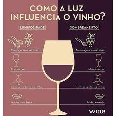Compre vinhos na Vinos Express  www.vinosexpress.com.br ⏰Entregamos em até 1 hora! *Consulte nossa área de entrega  #Repost @winevinhos  #vinosexpress #vinho #vinhos #delivery #deliverydebebidas #sp #wine #vino #vinos #express #winelover #degustação #descobertas #curiosidades #dicas #dicasvinho #redwine #prazer #litragem #wine #winetime #adega #tinto #rose #sp #instawine #instavinho #pictureoftheday #vinhododia