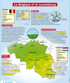 Educational infographic : La Belgique et le Luxembourg - AllWorldLanguages Ap French, Learn French, Teaching French, Pays Francophone, Le Luxembourg, Flags Europe, Geography Map, French Phrases, Travel Tips